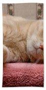 Orange Tabby Cat Lying Down Bath Towel