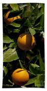 Orange Tree Bath Towel