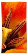Orange Tulip Bath Towel