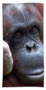 Orangutan Portrait Bath Towel