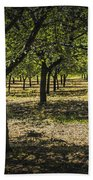 Orchard In West Michigan No. 279 Bath Towel