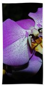 Orchid Beauty Bath Towel
