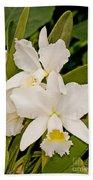 Orchid Sophronitis Bath Towel