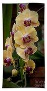 Orchids Pictures 10 Bath Towel