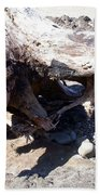 Oregon Beach - Driftwood Trunk Bath Towel
