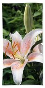 Oriental Hybrid Lily In White Peach And Pink  Bath Towel