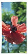 Oriental Poppy Bath Towel