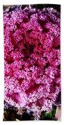 Ornamental Cabbage Plant Hand Towel