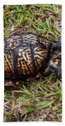 Box Turtle Bath Towel