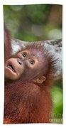 Orphan Baby Orangutan Bath Towel