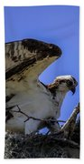 Osprey In The Nest Bath Towel