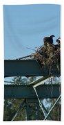 Osprey Nest With Mom And Chicks Bath Towel