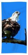 Osprey On A Branch Bath Towel