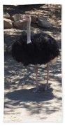 Ostrich Dance Bath Towel