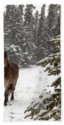Out For A Walk Bath Towel