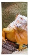 Out Of Africa Orange Lizard 1 Bath Towel