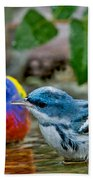 Painted Bunting & Cerulean Warbler Bath Towel