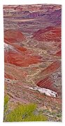 Painted Desert From Rim Trail In Petrified Forest National Park-arizona Bath Towel