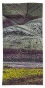 Painted Hills Bloom Bath Towel