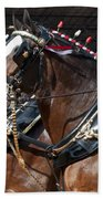 Pair Of Budweiser Clydesdale Horses In Harness Usa Rodeo Bath Towel