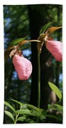 Pair Of Pink Lady Slippers  Bath Towel