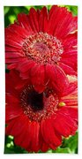 Pair Of Red Gerber Daisy Flowers With Ladybug Bath Towel