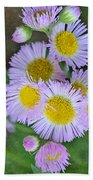 Pale Pink Fleabane Blooms With Decorations Bath Towel
