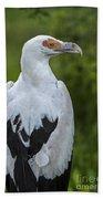 Palm-nut Vulture 2 Bath Towel