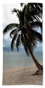 Palm On The Beach Bath Towel