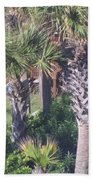 Palm Tree Scenery Bath Towel