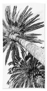 Palm Tree White Bath Towel