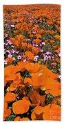 Panorama Califonria Poppies And Hollyleaf Gilia Wildflowers Bath Towel