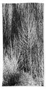 Panorama Winter Trees B And W Bath Towel
