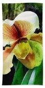 Paph Hellas Westonbirt Orchid Bath Towel
