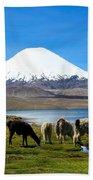 Parinacota Volcano Lake Chungara Chile Bath Towel