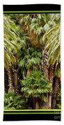 Park Palms Bath Towel
