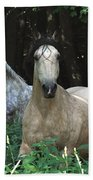 Paso Fino Mares Pay Attention Bath Towel