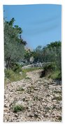 Path Among Olive Trees Bath Towel