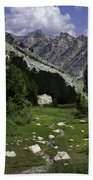 Path Of Life Ruby Mountains Stock Trail Bath Towel