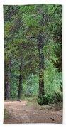 Path Through The Pines - Casper Mountain - Casper Wyoming Bath Towel