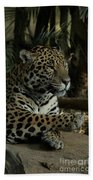 Paws Of A Jaguar Bath Towel