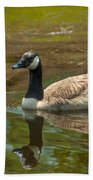 Peaceful Reflections Bath Towel