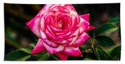 Peaceful Rose Hand Towel