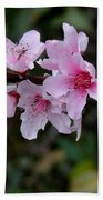 Peach Tree Blooms Miskitos Swoon Bath Towel