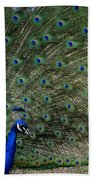 Peacock 8 Bath Towel