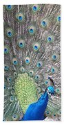 Peacock Bow Bath Towel
