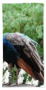 Peacock On A Rock 1 Bath Towel