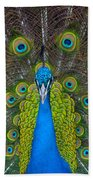 Peacock Portrait Bath Towel