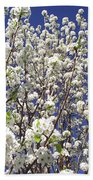 Pear Tree Blossoms In Spring Bath Towel