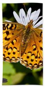 Pearl Border Fritillary Butterfly On An Aster Bloom Bath Towel